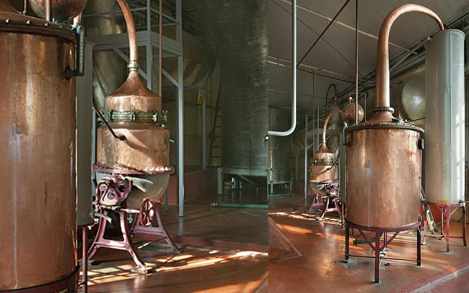 stabilimento torino distillati